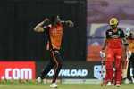 IPL 2020: RCB की टूर्नामेंट से विदाई, 6 विकेट से जीतकर फाइनल की रेस में SRH