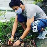 सुशांत का 1000 पेड़ लगाने का था सपना, बहन और दोस्त कर रहें पूरा